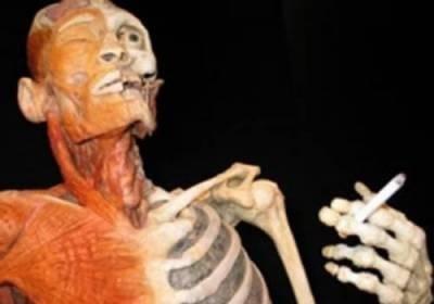 Влияние курения на организм человека