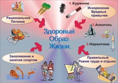 правила здорового образа жизни для младших школьников